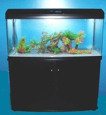 Diy 90 Gallon Aquarium Stand Woodworking Projects Amp Plans