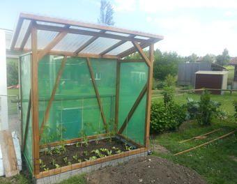 das fertige tomatenhaus gardening pinterest. Black Bedroom Furniture Sets. Home Design Ideas