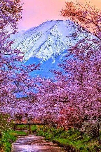 Monte Fuji - Japón