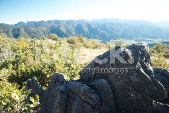 Marble Karst Rock Formation, Takaka Hill, Tasman, New Zealand royalty-free stock photo