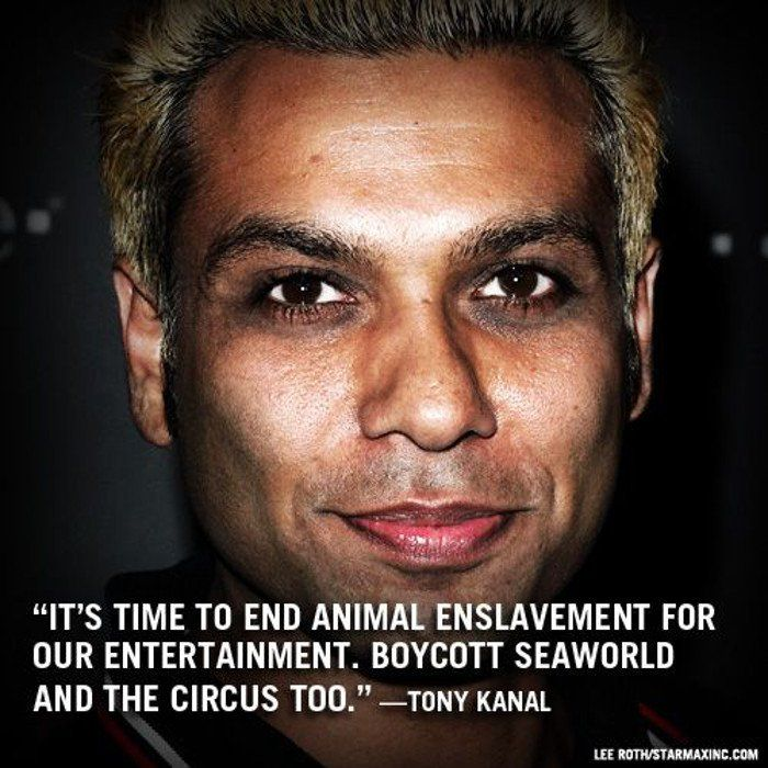 There's No Doubt That Tony Kanal Cares About Animals!