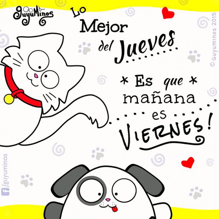 Ya casi es fin de Semana :D Disfruta tu día. The best thing on Thursday is tomorrow is Friday! ##guyuminos ##cat ##dog ##jueves ##viernes ##finde ##find... - Guyuminos - Google+