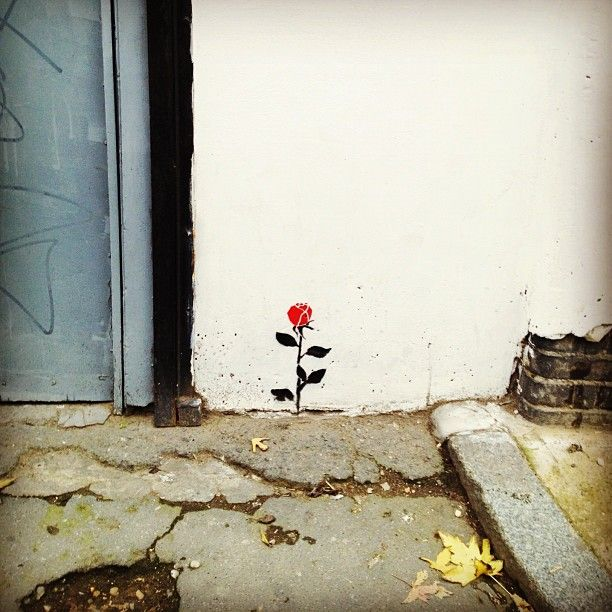 stencil, rose, street #art #Guerrila #Marketing
