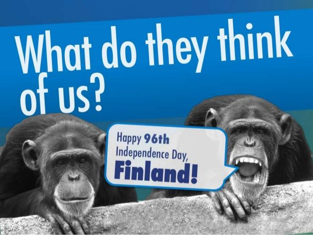 We gathered some facts about Finland as a reminder on the Finnish independece day. We are being quite hard on ourselves although we have been able to create quite good a country in the last almos 100 years. Hope this gives people thought about the greatness of our country.