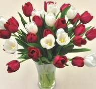 valentine flowers easley sc