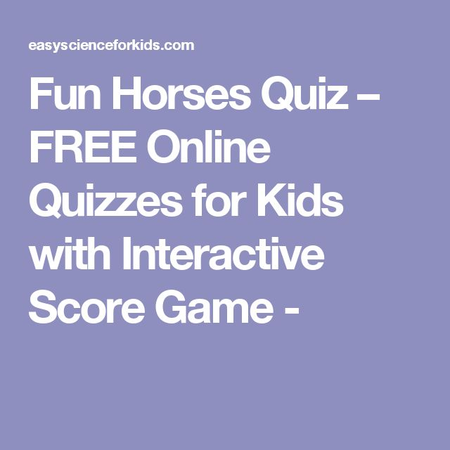 Fun Horses Quiz – FREE Online Quizzes for Kids with Interactive Score Game -