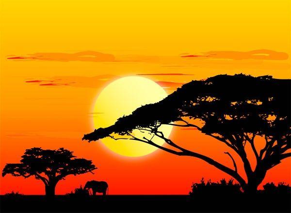 Il+continente+nero+regole+ed+informazioni+utili+per+il+Sud+Africa.