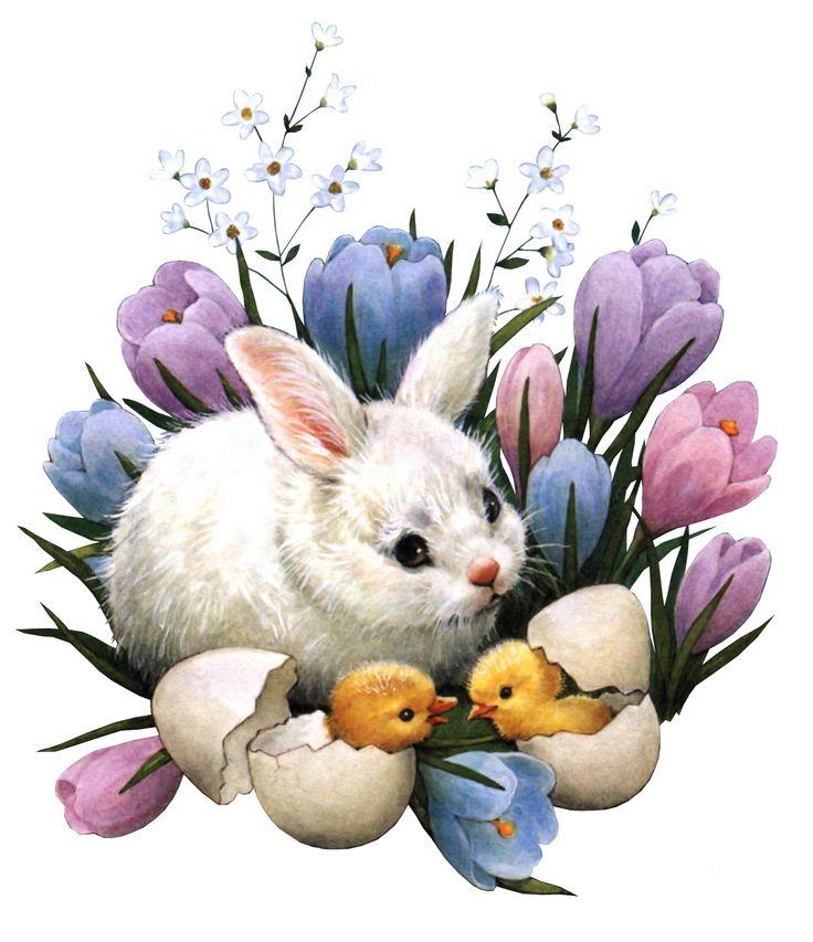 Сердечко надписью, открытки с пасхальными кроликами