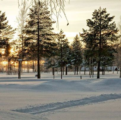 For snow, reindeer and Narnia style winter wonderland visit the town of Lulea in Swedish Lapland. redonline.co.uk