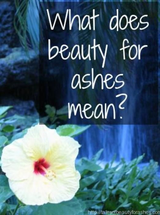 Beauty for Ashes Action Plan - Personal Study Guide ...