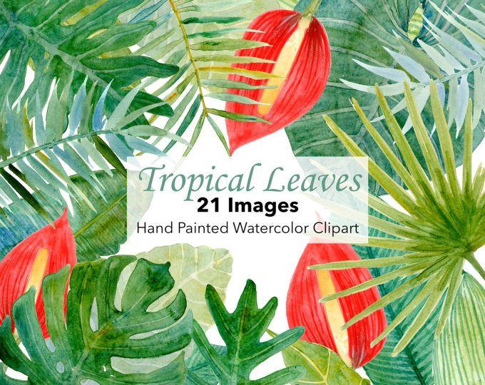 Árbol de hojas Prediseñadas, Tropical acuarela hojas, follaje de verde brillante, Monstera, palmeras tropicales, selva, invitación, ducha nupcial de la boda