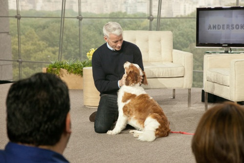 anderson cooper | celebs & their pets | Pinterest ...