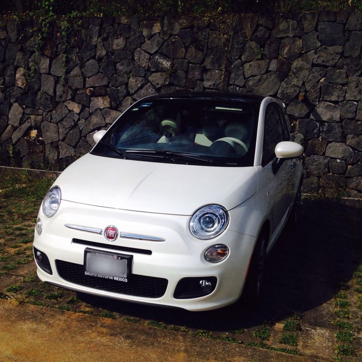 1000+ Images About FIAT