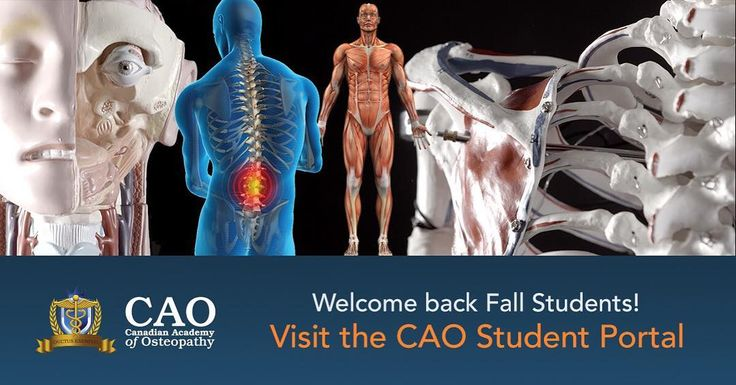 Reminder to all students to make sure you are able to log into the student portal! Visit http://ift.tt/1Q66cNy and use your username@CanadianOsteopathy.ca email login If you have any issues please contact us!  #osteopath #osteopathy #HamOnt #CAO #ManualTherapy #AlternativeMedicine #Demonstration #Love #osteopathic #HamiltonOntario #HigherEducation #Health #ATStill #picoftheday #instagood #Instahealth #Instalike #PhotooftheDay #Anatomy #Physiology