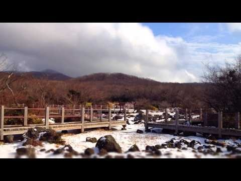 한라산의 겨울풍경을 가장 먼저 만날 수 있는 곳, 바로 1100도로의 1100고지습지가 아닐까요?