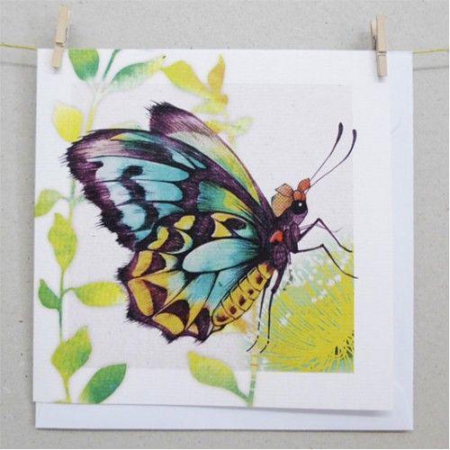 Cards - Richmond Birdwing Butterfly
