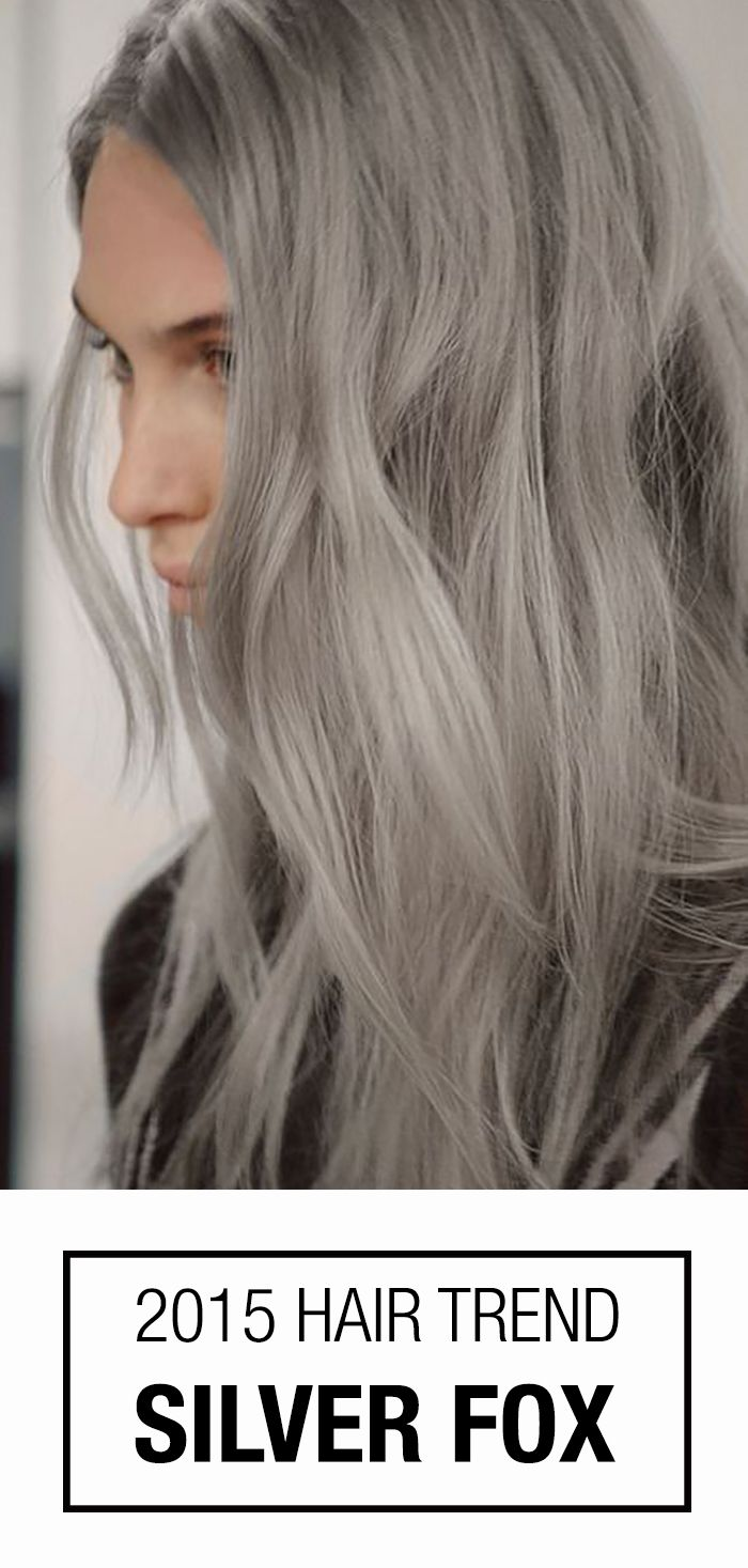 11 best grey toned hair color 2015 images on pinterest hair colors i could pull off hair this color im not grey enough yet to make the switch not without first bleaching my hair blonde then dying it grey solutioingenieria Image collections