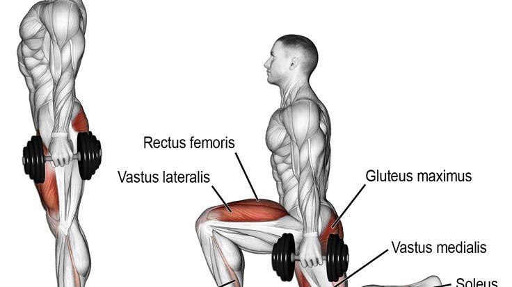 Dumbbell rear lunge exercise