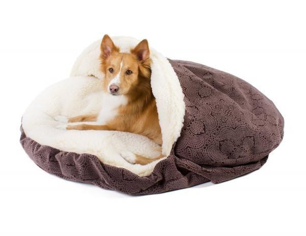 Cómo elegir una cama para mi perro - 10 pasos - unComo
