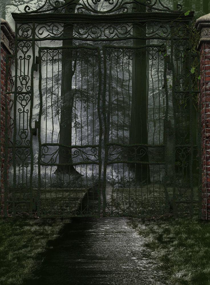 Doors, Halloween Gates, Gothic, Dark And Eerie, Gardens Gates, Dark Side, Haunted, Inside The Gates, Abandoned