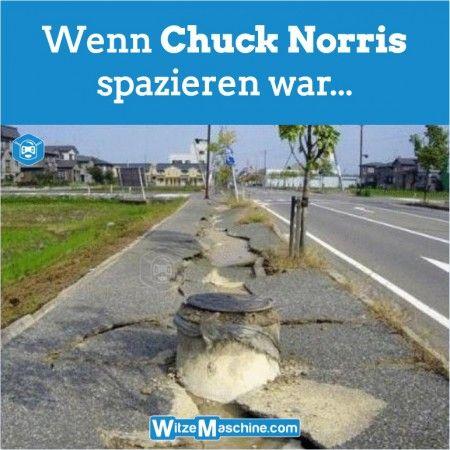 Chuck Norris Witze - Wenn er spazieren geht