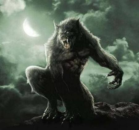 FOX Sports Fantasy Football - Team Werewolf
