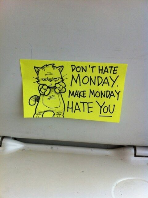 Don't hate Monday.  Make Monday hate you.  Peppy the Inspirational Cat by October Jones