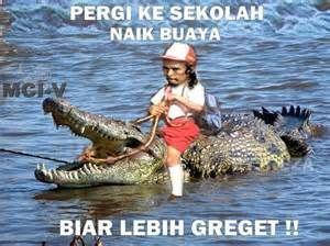 mad dog meme - Yahoo Hasil Image Search