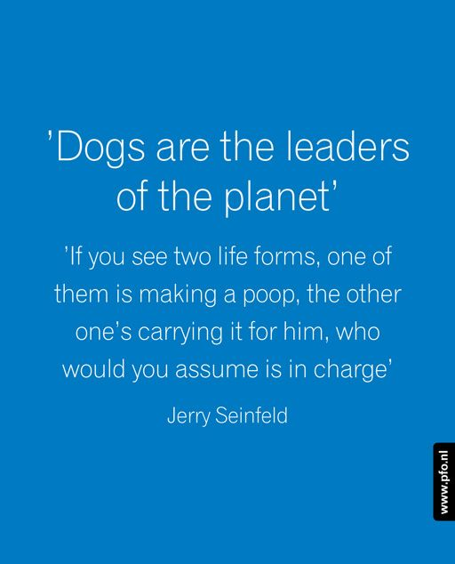 Quote Jerry Seinfeld