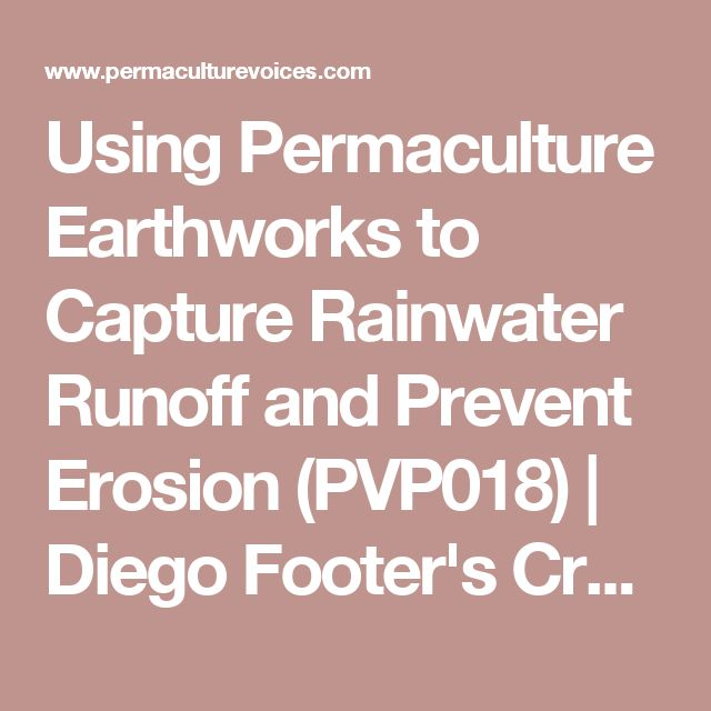 Using Permaculture Earthworks to Capture Rainwater Runoff and Prevent Erosion (PVP018) | Diego Footer's Creative Destruction