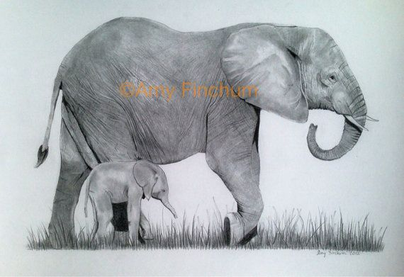 Elephant and Baby  Print  Pencil Drawing by AmysArtAlaMode on Etsy, $40.00