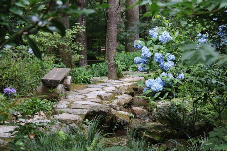 A piece of heaven amongst the hydrangeas in Japan.