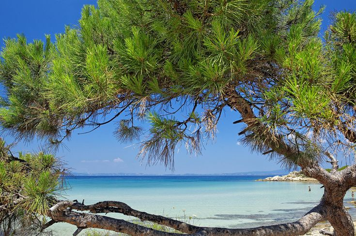 Karydi Beach, Sithonia, Halkidiki, Greece