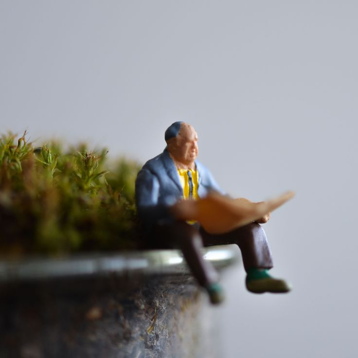 A reader in a miniature beaker terrarium from Bramble Thicket