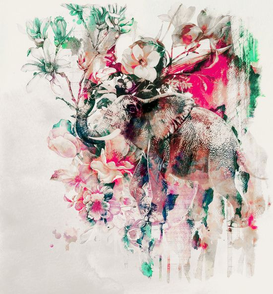 Poster | WATERCOLOR ELEPHANT AND … von Riza Peker