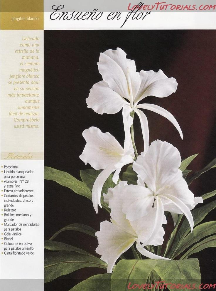 Цветы имбиря-Gumpaste (fondant, polymer clay) Hedychium coronarium (white ginger flower, The White ginger lily) making tutorial