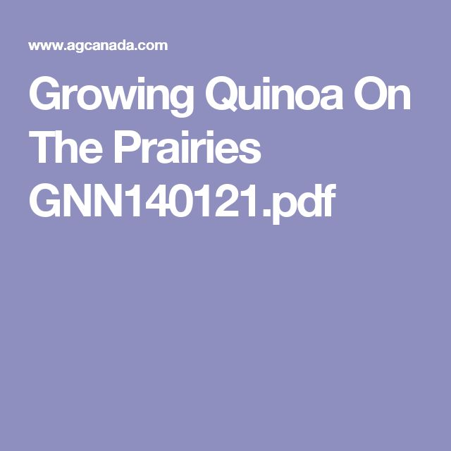 Growing Quinoa On The Prairies GNN140121.pdf
