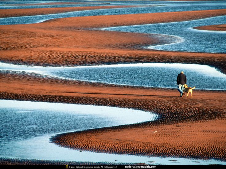 Prince Edward Island: Sandy Beaches, Green Gables, Beaches Photo, National Geographic, Prince Edward Islands, North Shore, Places, Beautiful Beaches, Dreams Destinations