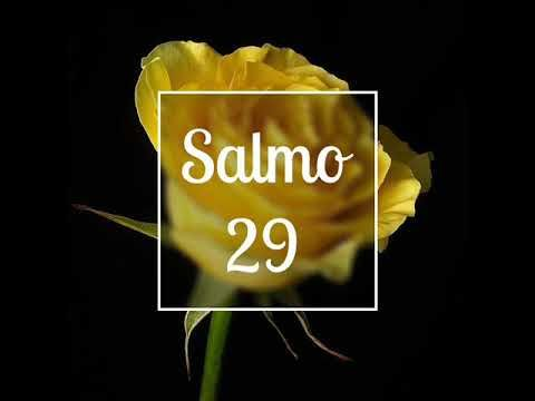 SALMO 29 / BIBLIA HABLADA