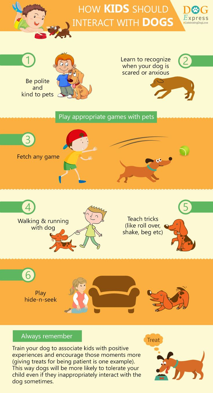 How Kids Should Interact With Dogs #Interactwithdogs #doginfographics