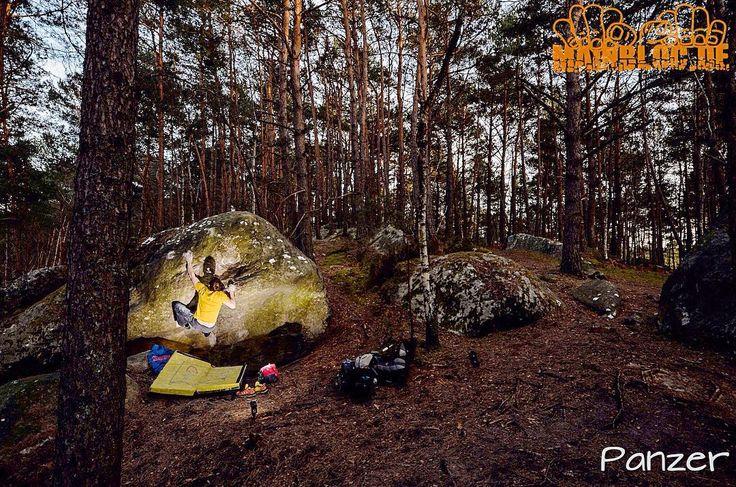Harte Nuss @marc_the_graf  ....  #fontainebleau .... #bouldern #klettern #bouldering #climbing #timetoclimb #ilovebouldering #climbingphotography #bouldering_pictures_of_instagram #climbing_pictures_of_instagram  #climbing_is_my_passion #climb #escalada #photooftheday #nature #nofilter #outdoor #climbingisfun #great #love  #mainbloc
