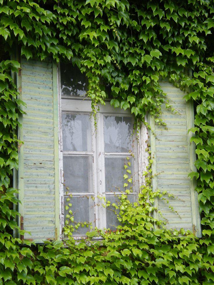 ablak Martonvásár Brunszvik kastély