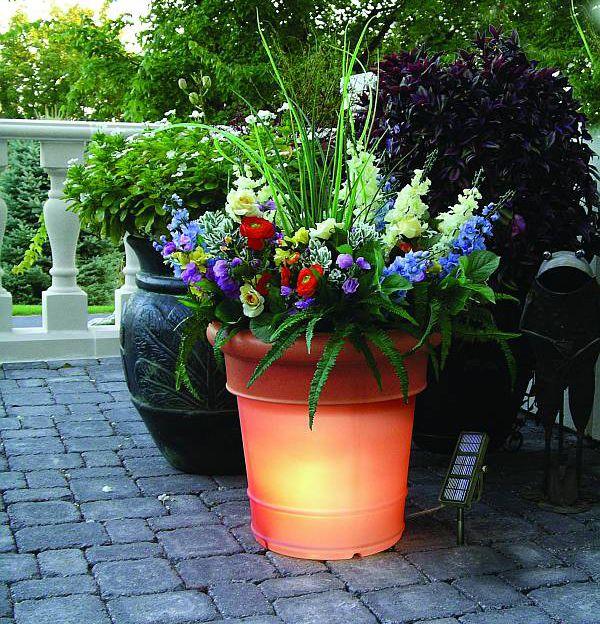 Indoor Or Outdoor Garden Idea   Fun For Halloween (http://www.