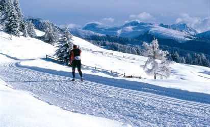 Perfect winter fun, fantastic South Tyrolean landscape