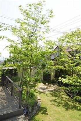 福岡ガーデニング&造園工房~雑木の庭