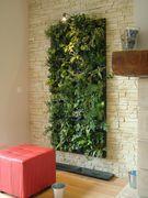 Flowall Green Wall > Black Flowall kits x8 : Flowall