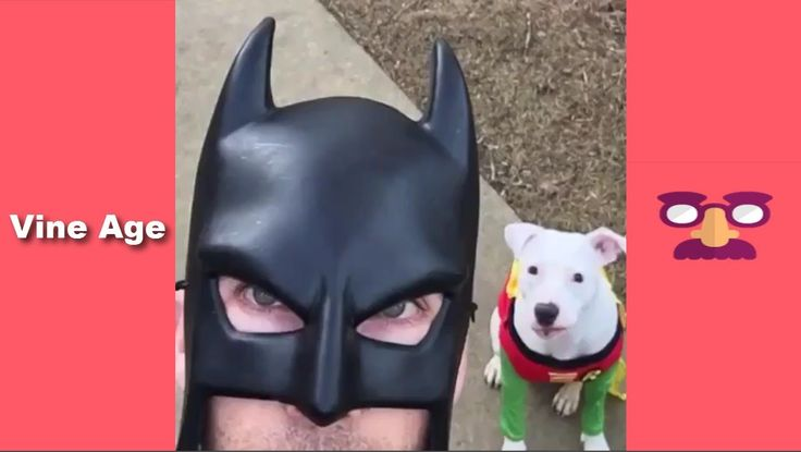 Try Not To Laugh Watching The BatDad Vine / Best Vines Compilation of Ba...