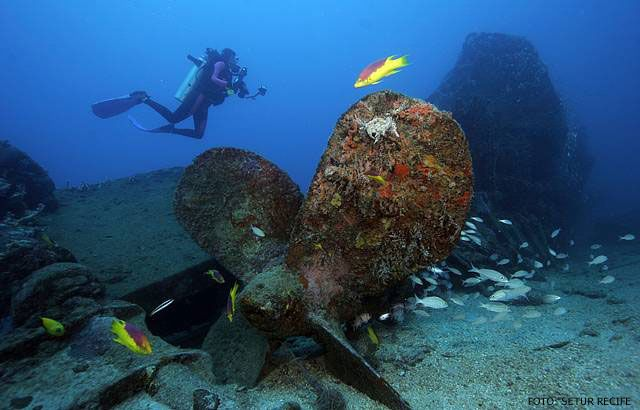 mergulho em bombinhas - Pesquisa Google