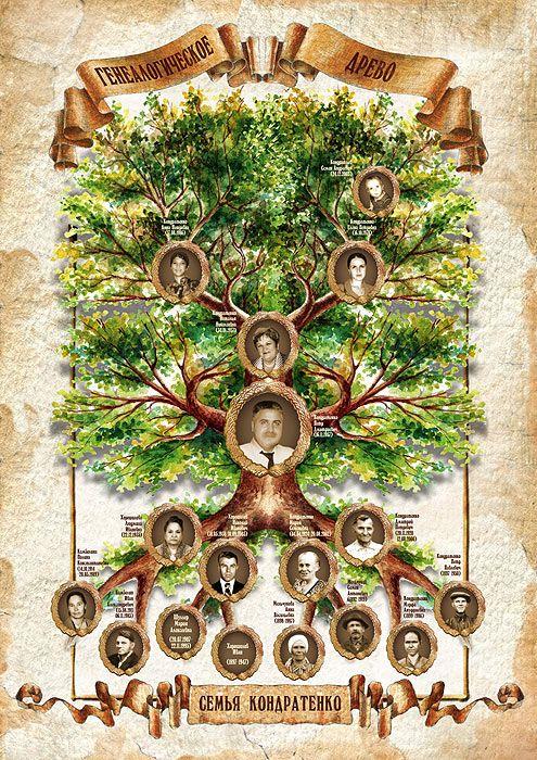 генеалогическое дерево скачать бесплатно программу - фото 10