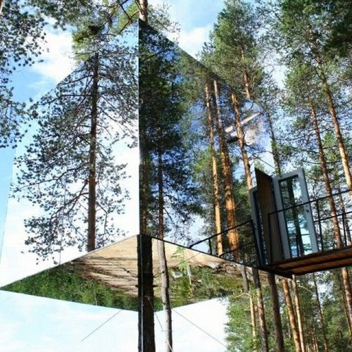 Best Mirrored Tree House Images On Pinterest Treehouses